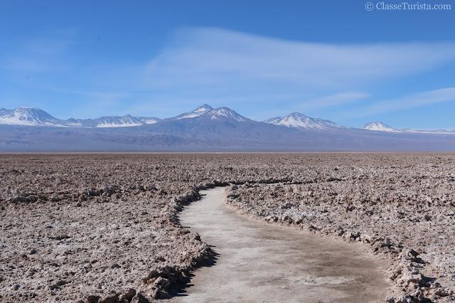 Salar do Atacama - Laguna Chaxa - Reserva Nacional dos Flamingos
