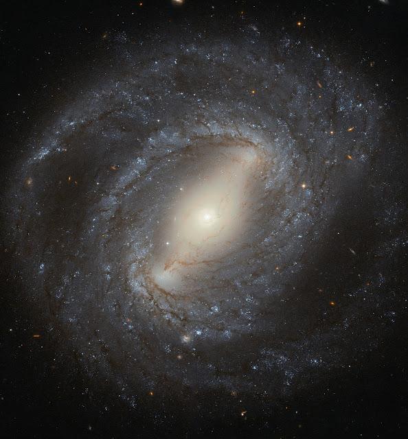 Spiral Galaxy NGC 4394