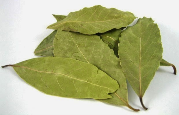 lovorov list protiv stres