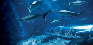 RWS Delight Package - S.E.A Aquarium (South East Asia Aquarium) - Resort World Sentosa Delight Ultimate Package