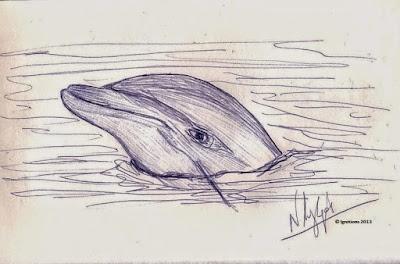 Το δελφίνι του Ελληνισμού