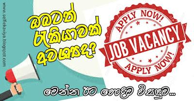 JOB VACANCY Srilanka
