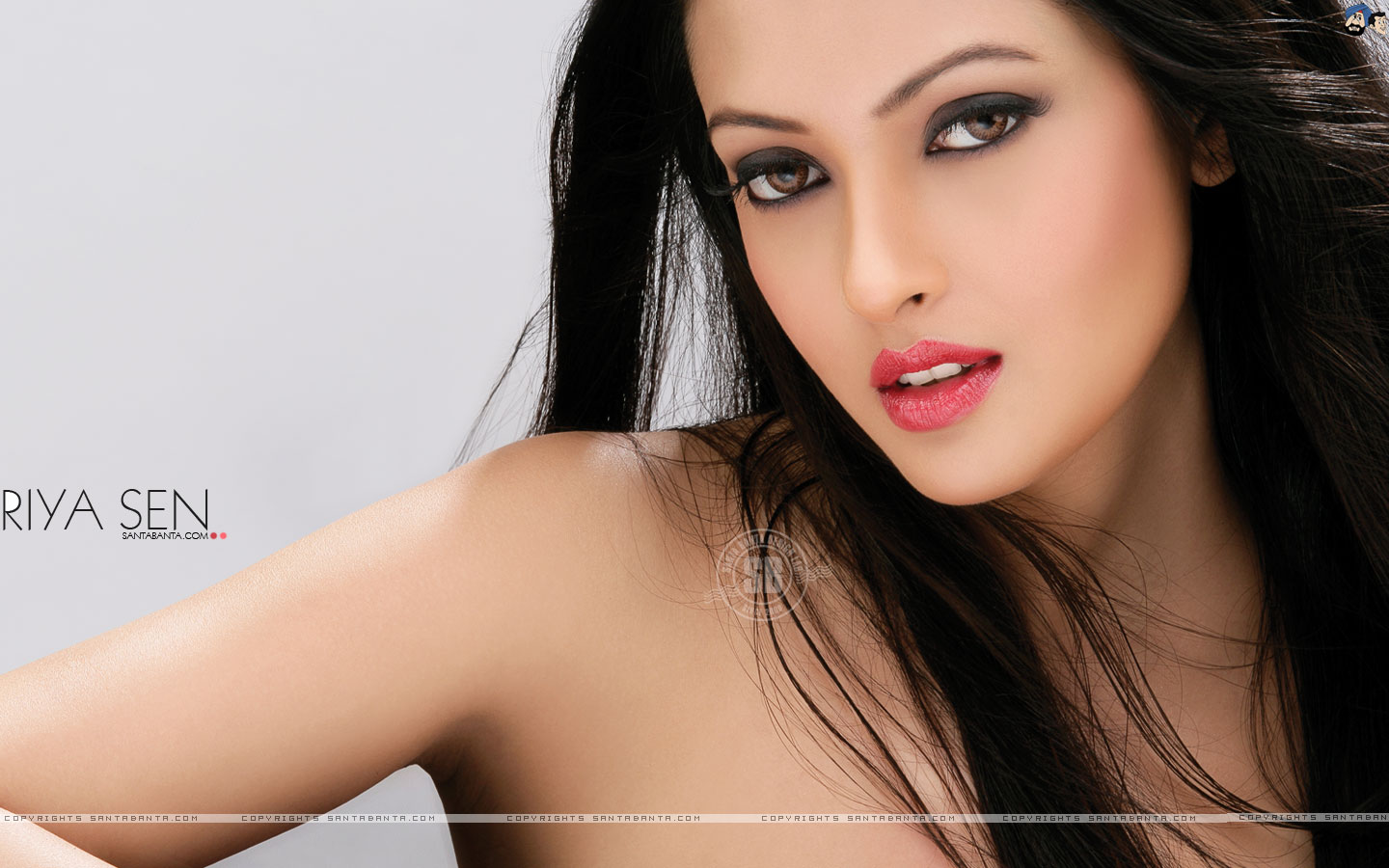 HD Wallpaper of Riya Sen | HD Wallpapers
