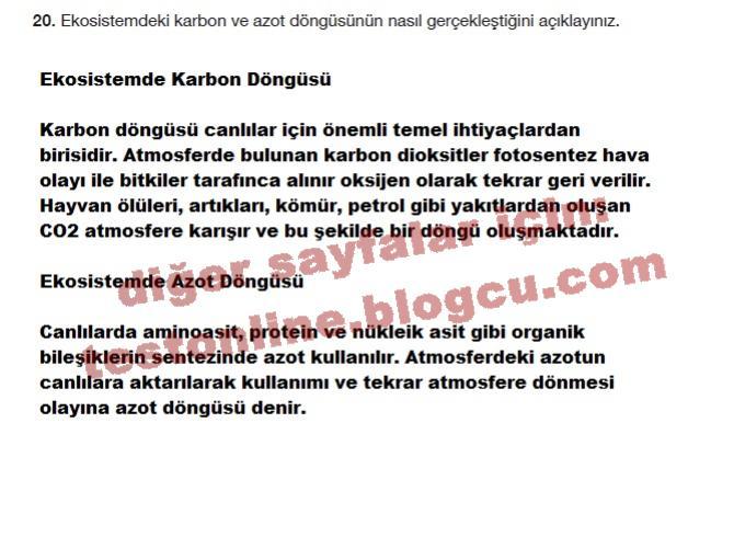 10.sinif-biyoloji-evrensel-sayfa-170-soru-20