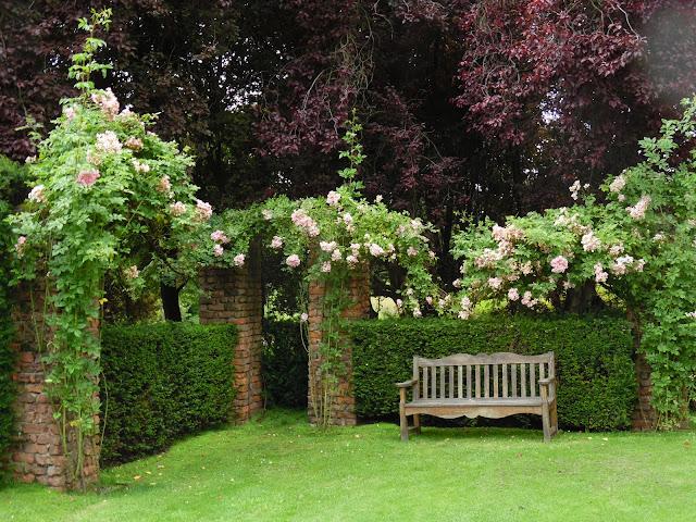 drewniana ławka, cegła w ogrodzie, żywopłot z cisa