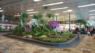 Changi Terminal