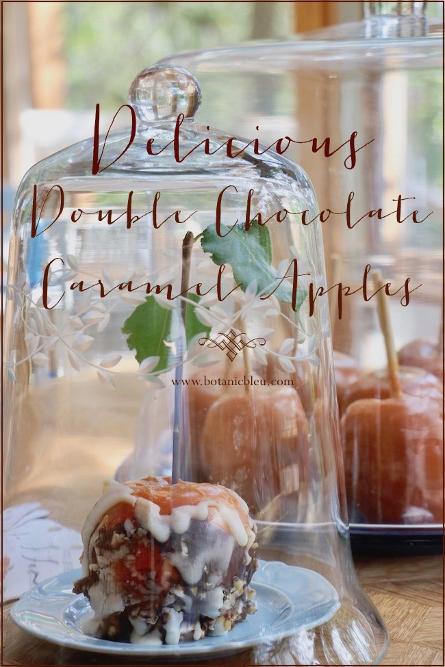 store double chocolate caramel apples under glass cloches