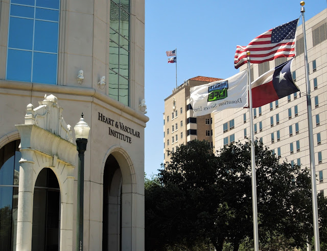 Heart & Vascular Institute with Flags