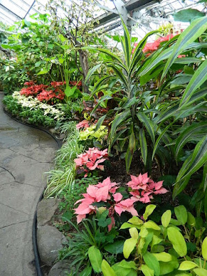 Massed tropical plants and ponisettias at the 2018 Allan Gardens Conservatory Winter Flower Show by garden muses--not another Toronto gardening blog