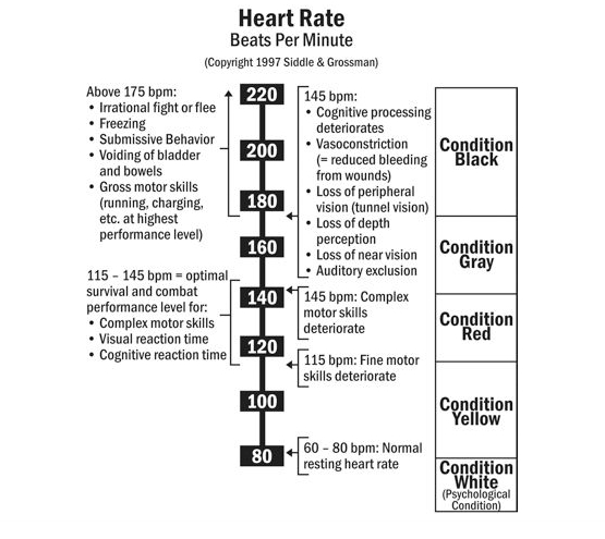 Heart Rate Beats Per Minute Chart Erkalnathandedecker