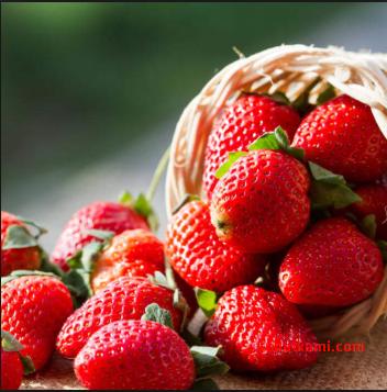 buah untuk menurunkan darah tinggi yaitu strowbery