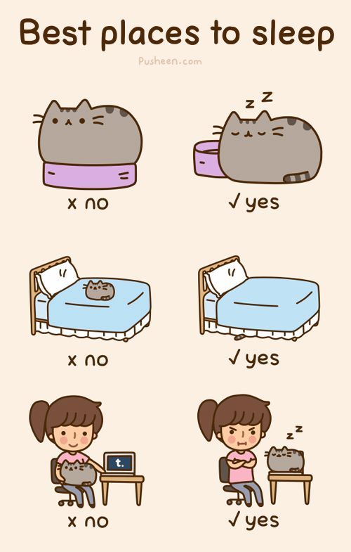 Pusheen the cat Mundo Feliz