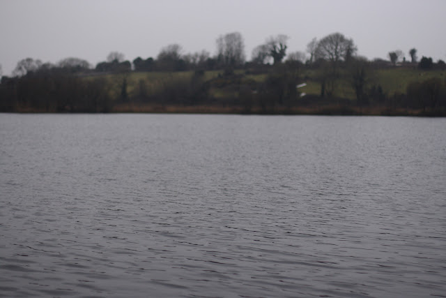 Lough Down , Moycullen
