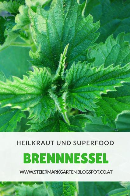 Brennnessel-Pin-Steiermarkgarten