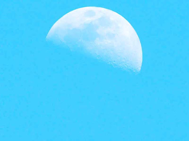 half moon, first quarter,late afternoon, blue skies