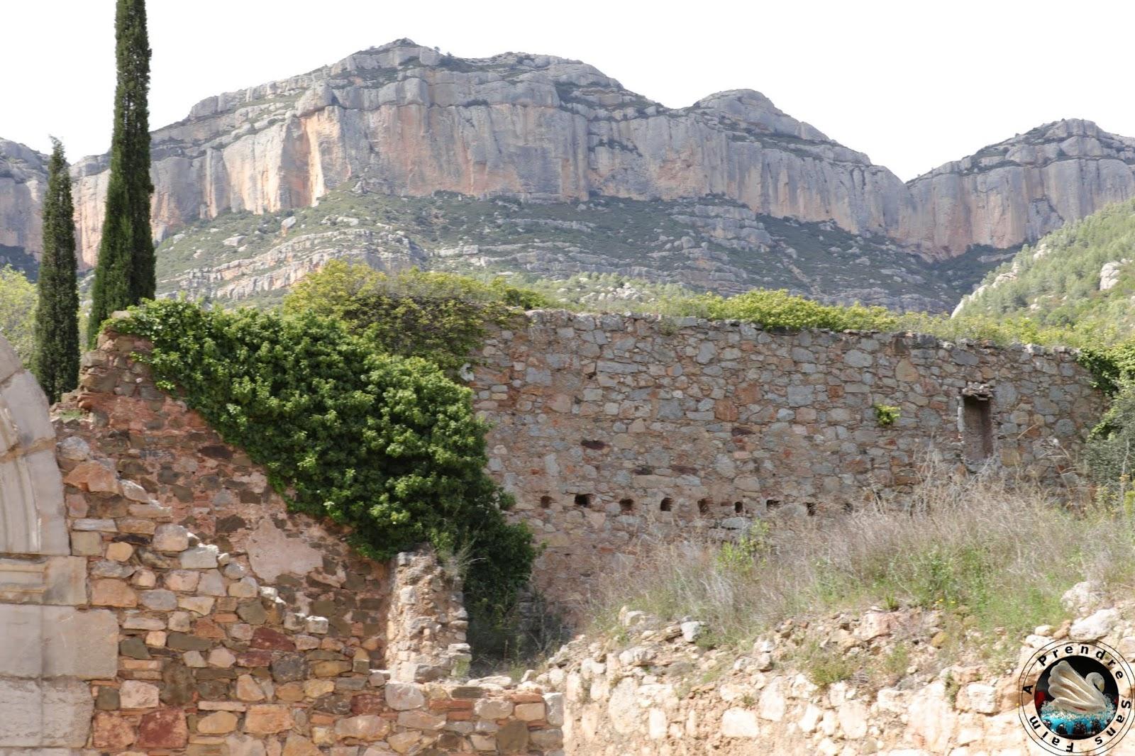 Les origines du Priorat : la Chartreuse de Scala Dei