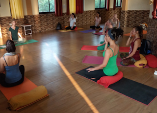 How to Research and Find an Ideal Yoga Retreat in India?