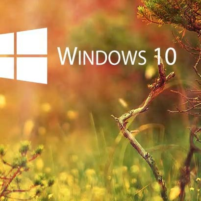 Win10 Sunshine Dynamic Wallpaper Engine