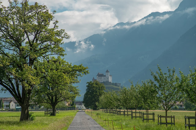 Rund ums Ellhorn  Wanderung Balzers  Fürstentum Liechtenstein 14
