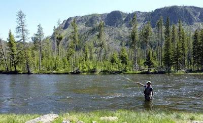 Image 2: Gallatin River, Montana.