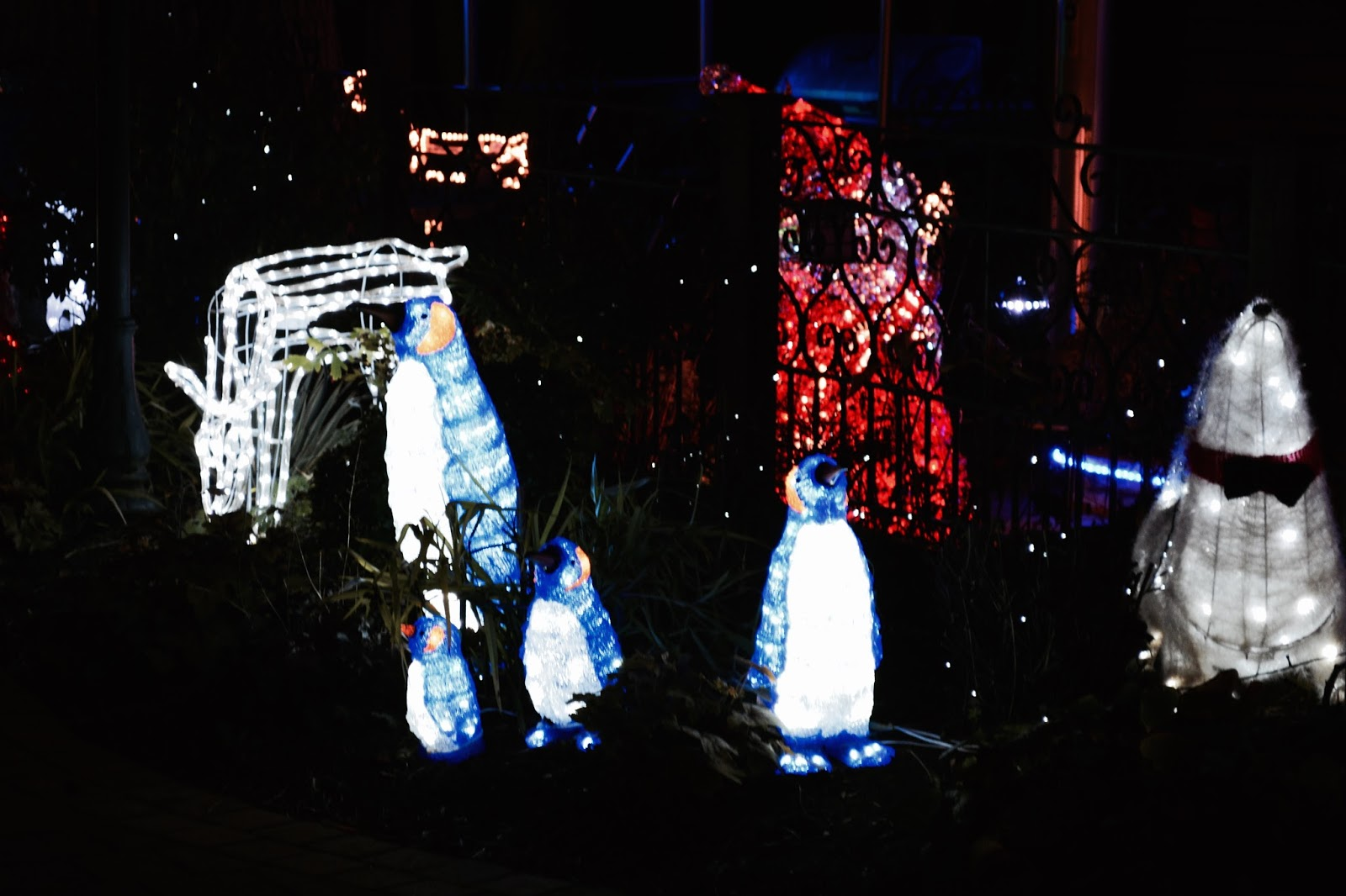 Christmas Lights, Lights At Overstone Park, Log Cabins, Festive, Christmas, Blogmas,