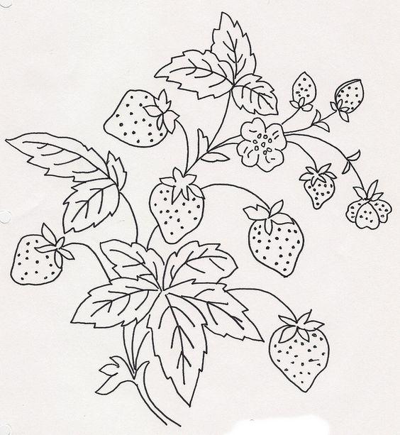 Hình tô màu cây dâu tây