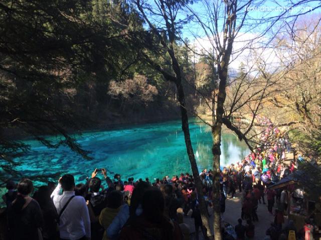 Mùa thu, khách du lịch đến với Cửu Trại Câu rất đông