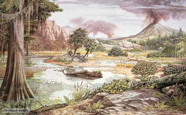 Período Cretáceo (77,6 milhões de anos)