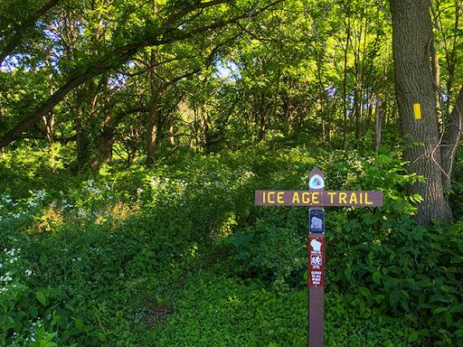 Ice Age Trail Springfield Hill Segment