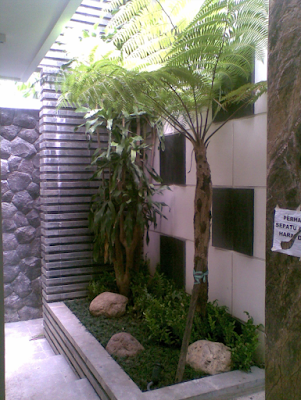 Tukang Taman Jakarta | www.ahli-tamanjakarta.com