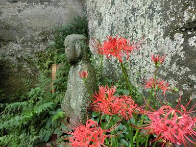 浄光明寺のヒガンバナ