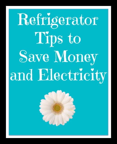 Refrigerator Maintenance Can Save You Money!