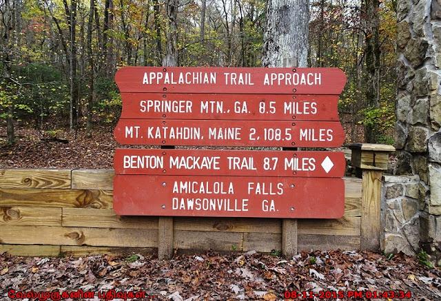 Trailsin Amicalola Falls State Park
