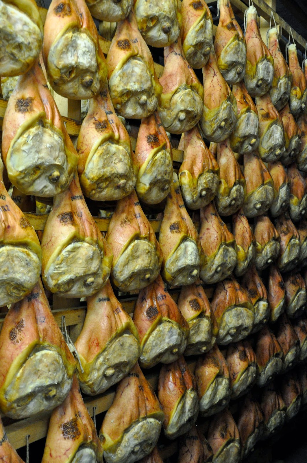 Prosciutto being dry cured