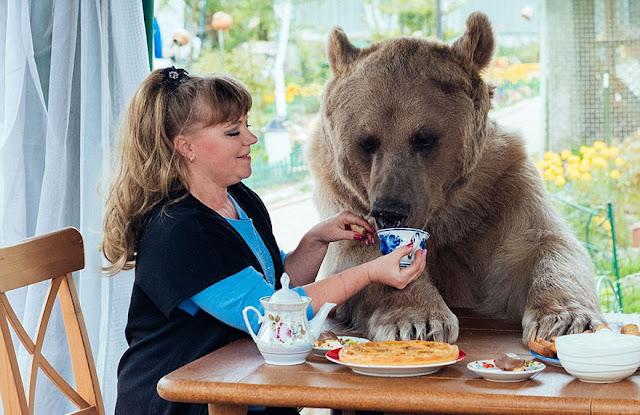 http://kongxie.blogspot.com/2016/10/stepan-si-beruang-comel-yang-gemar.html
