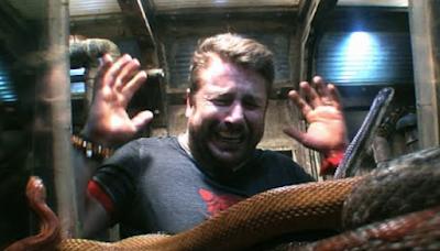 Libérez-vous de votre peur des serpents
