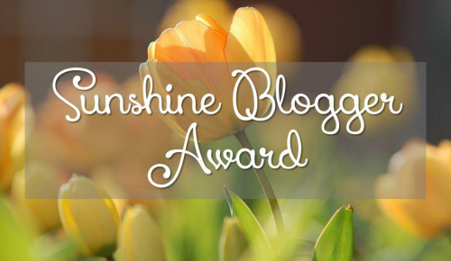 sunshine-blogger-award-flick-chicks