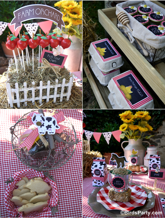 Farm and Barnyard Birthday Party Kids Table Styling - BirdsParty.com