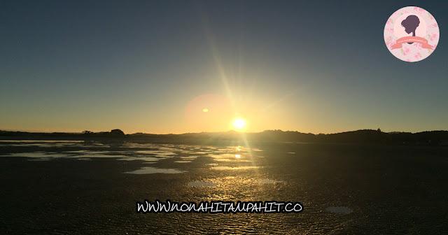 WHANGATEAU_NEW_ZEALAND_NONA_HITAM_PAHIT