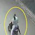"""Con """"uñas y dientes"""" mujer dominicana enfrenta a dos atracadores en La Vega"""