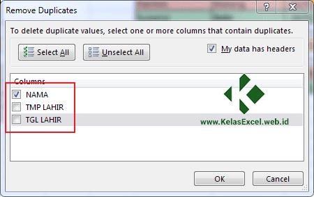 Cara Menghapus Data Ganda Pada Excel 5
