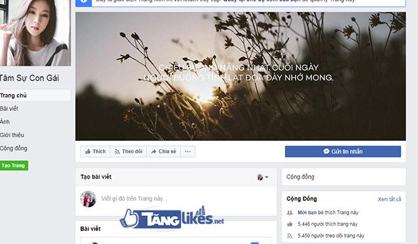 mua fanpage facebook