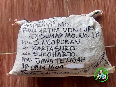 Benih pesana SUPRAYITNO, Sukoharjo, Jateng  (Sesudah Packing)