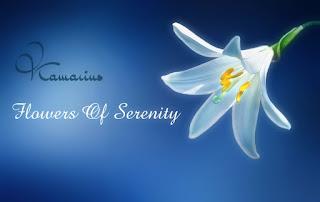 http://kamarius.blogspot.com/2017/02/kamarius-flowers-of-serenity.html