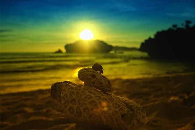 Jogja Seksi 5: Pemandangan Memikat Di Pantai Sundak, Yogyakarta. Pantai Sundak Bisa Buat Camping Jon!
