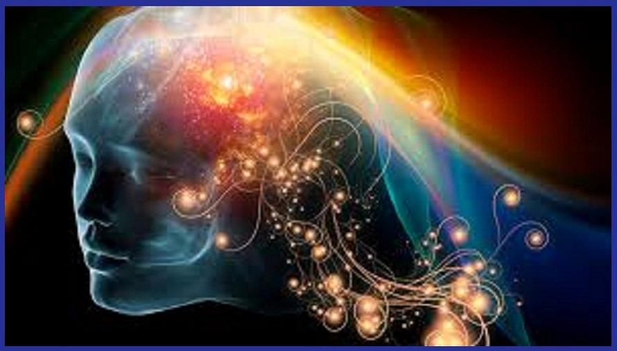 Resultado de imagen para psiconeuroinmunologia la mente genera la realidad