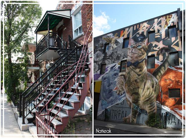 Maison à proximité du métro Jarry , street art rue Pierce Montréal