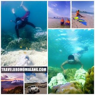 http://www.travelbromomalang.com/2016/06/paket-wisata-bromo-snorkeling-gili.html