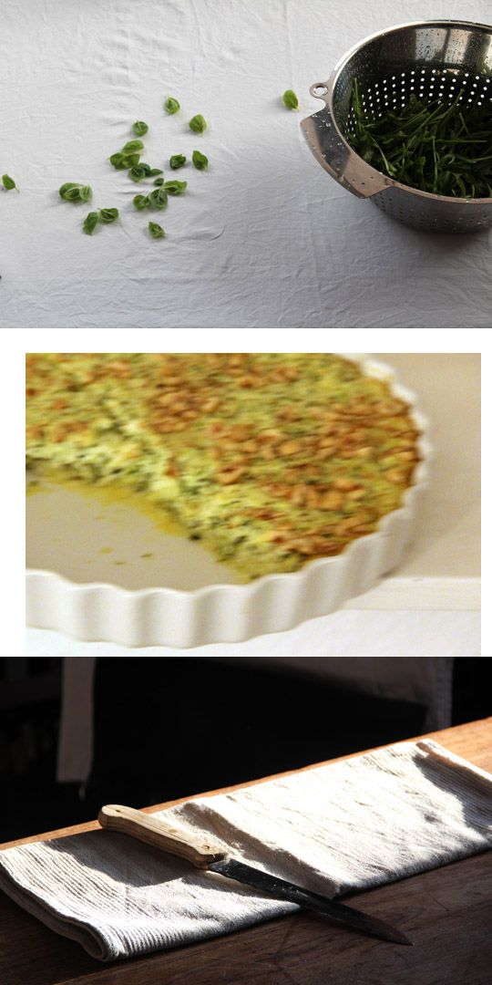 torta di zucchine o herzhafter zucchinikuchen I fräulein text