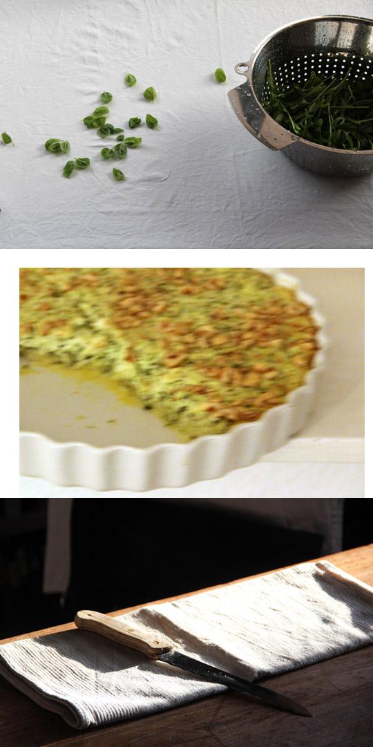 torta di zucchine I fräulein text